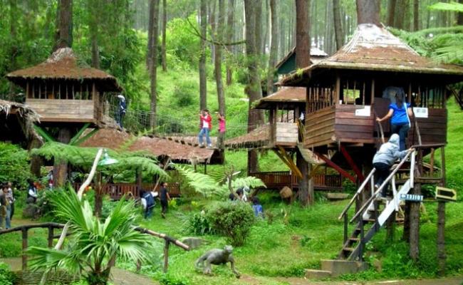 Rumah Pohon Jatiasih