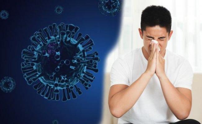 Varian-Virus-Delta